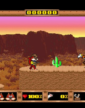 Skunny: In The Wild West DOS front cover