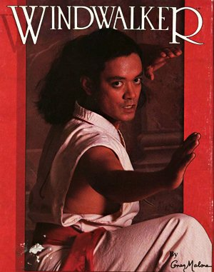 Windwalker DOS front cover
